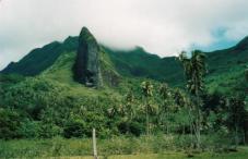 Разное. Остров Раиатеа.
