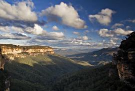 Облик ландшафтов австралии в основном